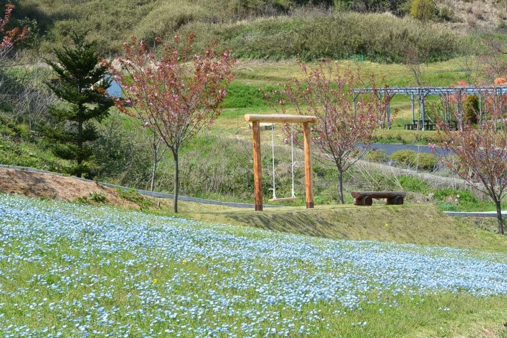 A swing stood in front of a field of blue flowers