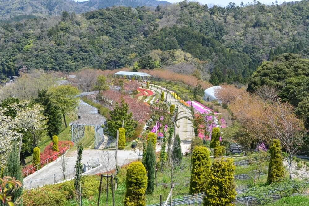Looking down on a path through a flower park